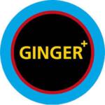 Ginger Hairstyling_zugeschnitten
